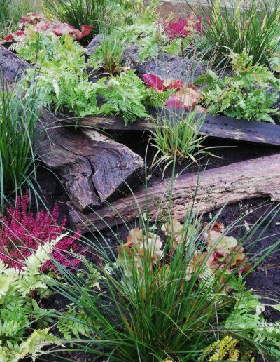 Bepflanzung mit Blattschmuck und Pink